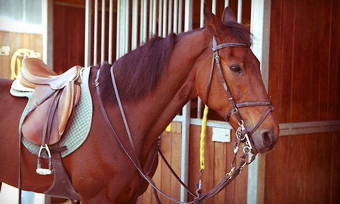 La Fleur Stables - West Madison: Two Horseback-Riding Lessons or Children's Birthday Party for Eight at La Fleur Stables (Up to 51% Off)