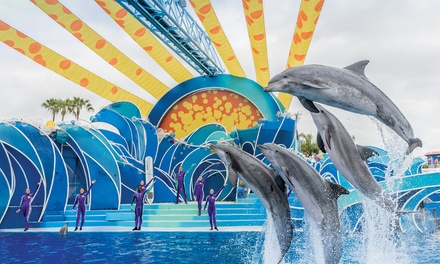 Single-Day Ticket with Optional All-Day Dining to SeaWorld San Diego (Up to 22% Off)