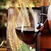 30% Off Craft Beer, Wine & Bourbon Festival Admission