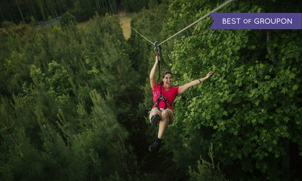 One, Two, or Four Adult Admissions to Treetop Adventure at Go Ape ( 16% Off)