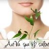 Up to 60% Off at AnVa Spa & Salon
