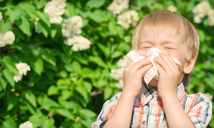 PA Allergy Relief Laser Center - West Norriton: One or Three Laser Allergy Treatments, Plus Allergy Testing of Food and Gluten Sensitivities, Pollen, Trees, Grasses, and Molds at PA Allergy Relief Laser Center in Jeffersonville (Up to 75% Off)