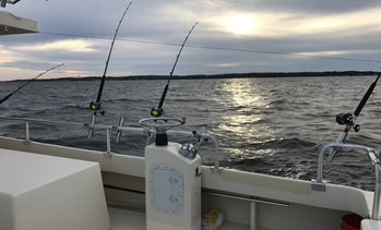 33% Off Fishing Trip at Chesapeake Bay Sport Fishing