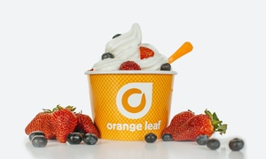 Frozen Yogurt at Orange Leaf Frozen Yogurt (40% Off)