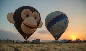 סקיי טרק כדורים פורחים: טיסה מדהימה בכדור פורח, ארוחת בוקר מפנקת בחיק הטבע של עמק יזרעאל, שמפנייה, צילומי HD ועוד, ב-615 ₪ בלבד!  ב-Sky Trek