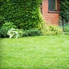 Up to 62% Off Weed-Control Treatment
