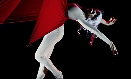 Coupon Esperienze Groupon.it Spettacoli di danza al Teatro Carcano di Milano (sconto fino a 42%)