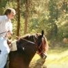 Up to 52% Off Trail Ride for Two in Whitewright