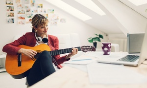 LerneMusikOnline: Onlinekurs für Gesang oder Instrument täglich bis 22 Uhr mit persönlichem Lehrer bei LerneMusikOnline(50% sparen*)