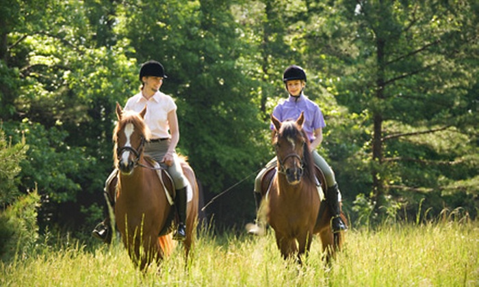 Faithful Stables - Raleigh / Durham: Horseback-Riding Lesson and Trail Ride for One or Four from Faithful Stables in Rocky Mount