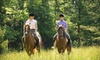 Faithful Stables - Rocky Mount: Horseback-Riding Lesson and Trail Ride for One or Four from Faithful Stables in Rocky Mount