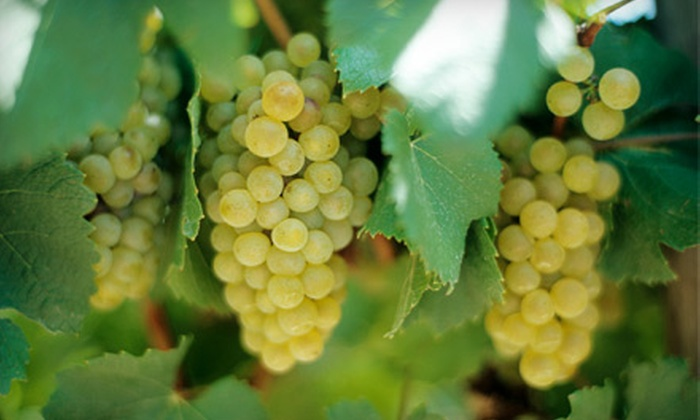 Gray Line - Uptown Broadway: Hill Country Wine Tour. Six Dates Available.
