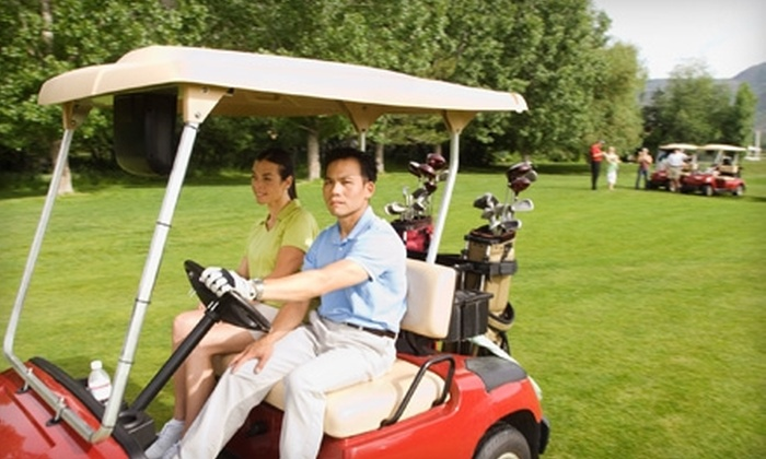 Salt Creek Golf Club - Wood Dale: $25 for 18 Holes of Golf with Cart at Salt Creek Golf Club in Wood Dale (Up to $54 Value)