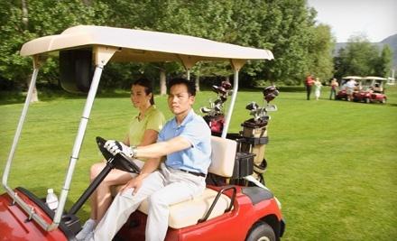 Salt Creek Golf Club - Salt Creek Golf Club in Wood Dale