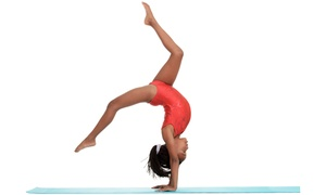 Accel Gymnastics: $39 for Four Basic, Beginning, or Intermediate Gymnastics Classes at Accel Gymnastics ($87 Value)