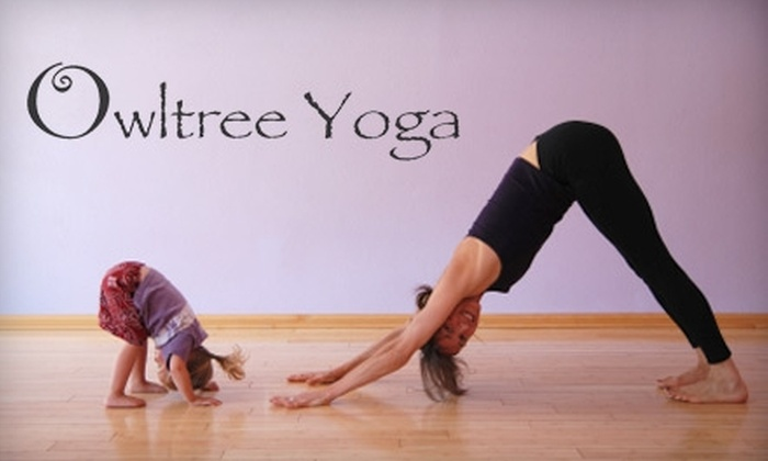 Owltree Yoga - Butchertown: $29 for 10 Adult Yoga Classes ($108 Value) or $19 for 10 Kid, Toddler, or Mommy & Me Yoga Classes ($95 Value) at Owltree Yoga