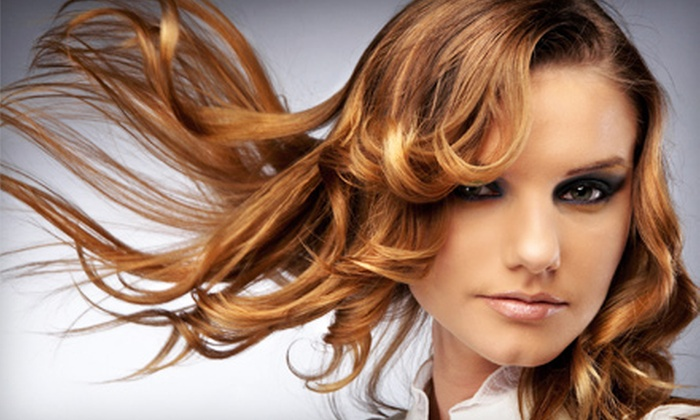 Lavish Salon - Downtown: Hair Conditioning and Styling Packages for One or Two at Lavish Salon