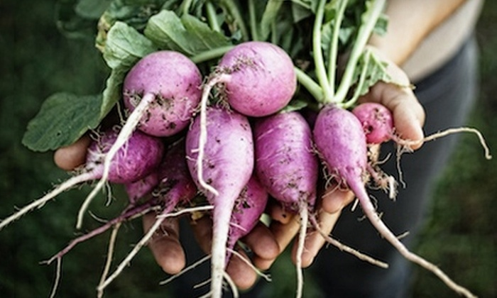 Farmhouse Delivery - Holly: $29 for Fresh Produce Delivery from Farmhouse Delivery (Up To $59 Value)
