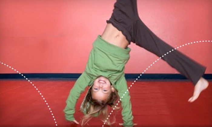 The Little Gym - Multiple Locations: $54 for Four Weekly Children's Classes and a One-Year Membership Fee at The Little Gym (Up to $119 Value). Two Locations Available.