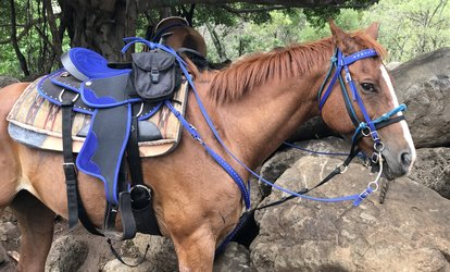 image for Horseback Tour for One, Two, or Four at Ohikilolo Adventures (Up to 37% Off)