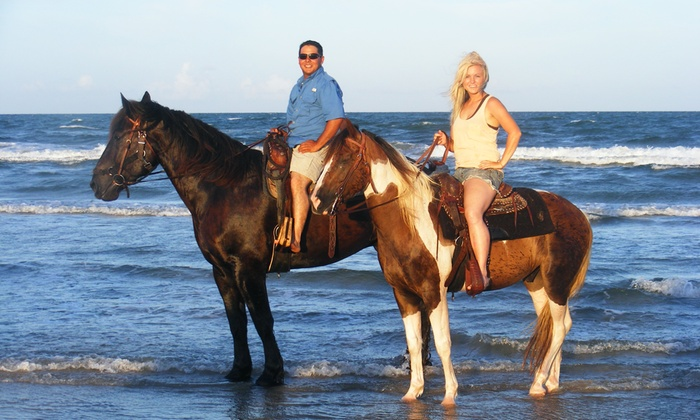 Horses on the Beach: Corpus Christi - Horses on the Beach: Corpus Christi: One-Hour Horseback Riding for One or Two at Horses on the Beach: Corpus Christi (Up to 30% Off). Four Options.