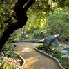 Up to 35%Off Admission at Storrier Stearns Japanese Garden