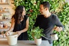 Up to 47% Off Workshop at Le Petit Garden