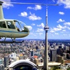 Helicopter Tour of Toronto. Additional Option Available.