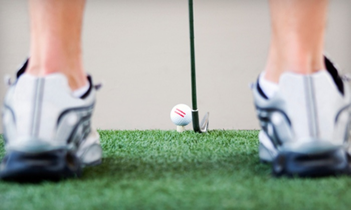 Harper Miller School of Golf - Bessemer: $35 for a One-Hour Private Golf Lesson from Lee Harper or Charles Miller at Harper Miller School of Golf in Bessemer ($70 Value)