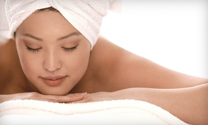 Terra Spa Aveda - Dedham: 60-Minute Massage, 60-Minute Facial, or Brazilian Wax at Terra Spa Aveda in Dedham (Up to 57% Off)
