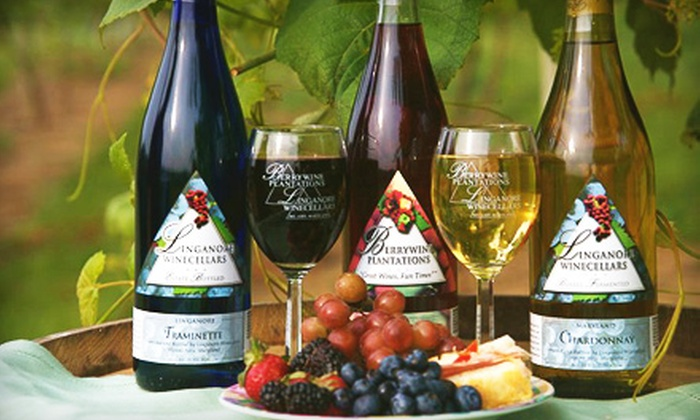 Customer Reviews & Up to 52% Off Group Wine Tasting in Mount Airy - Berrywine ...