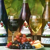 Up to 52% Off Group Wine Tasting in Mount Airy