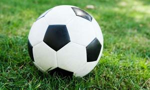 Domenico Gendarmi - Italian Soccer Coach: $10 for $33 Worth of Products — DOMENICO GENDARMI - ITALIAN SOCCER COACH