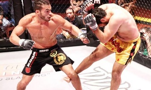 Premier Fighting Championship: Premier Fighting Championship 20 MMA Event on Saturday, July 30, at 7 p.m.