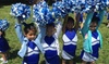 Bay area cheer power - Multiple Locations: $5 for Cheer Camp Registration Fee for One ($50 Value) — Bay Area Cheer Power