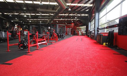 2-Week Gym Access + 30-Min Personal Training Session: 1 ($9), 2 Ppl ($15), UFC Gym - Fountain Gate (Up to $314.40 Value)