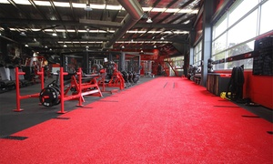 UFC Gym - Fountain Gate: 2-Week Gym Access + 30-Min Personal Training Session: 1 ($9), 2 Ppl ($15), UFC Gym - Fountain Gate (Up to $314.40 Value)