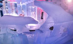"""אייס ספייס: Ice Space באילת: כניסה למתחם + עלייה למתקן לבחירה בספירל פארק הסמוך + שתייה בכוס מקרח ב-69 ₪ בלבד! גם בסופ""""ש"""