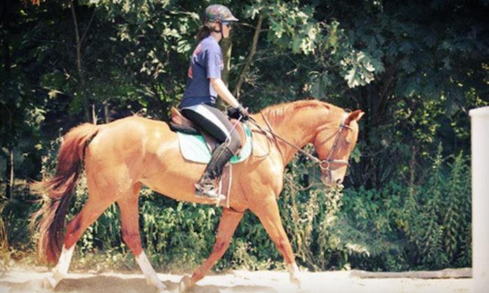 Gaston Farm Inc. - Boxford: One or Four 60-Minute Private Horseback-Riding Lessons at Gaston Farm Inc. (Up to 60% Off)