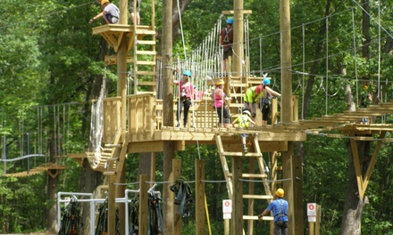 Three-Hour Conquer the Canopy Adventure for One or Two at Edge Adventures (Up to 30% Off)