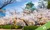 Japan: 6-Night Tour with Guide