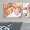 "Premium Canvas Prints Available in Size 16""x20"" – Free Shipping"