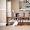 Carlson Pet Products Freestanding Wooden Pet Gate