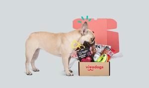 Vivadogs: Wertgutschein über 25 € oder 114 € anrechenbar auf ein VivadogsBox-Abonnement für 1 oder 6 Monate bei Vivadogs