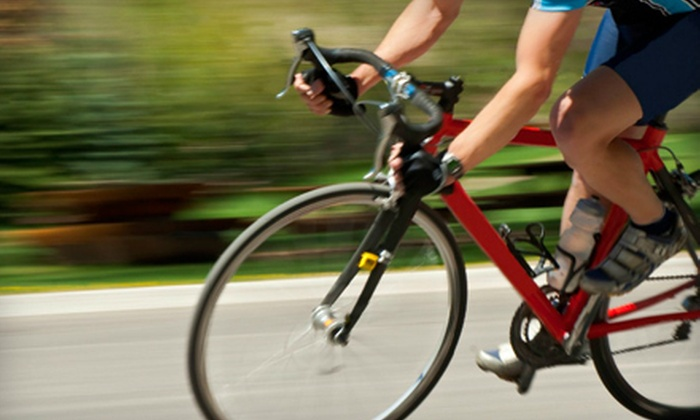 19 Sports - Park City: Bike Tune-Up or Bike Tune-Up Plus at 19 Sports in Park City (Up to 74% Off)