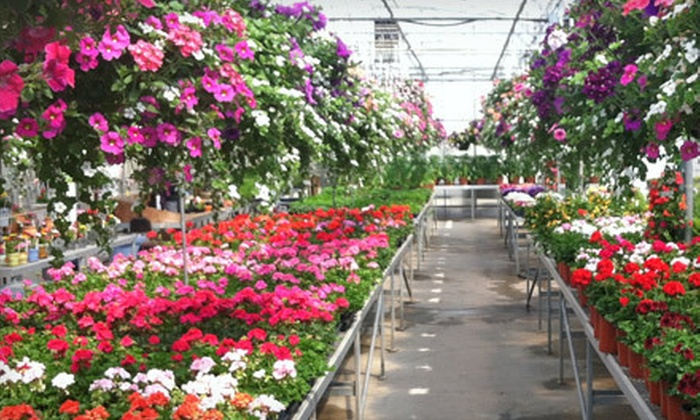 Spoth's Farm Market - Woodstream Farms: $15 for $30 Worth of Plants and Garden Supplies at Spoth's Farm Market in East Amherst