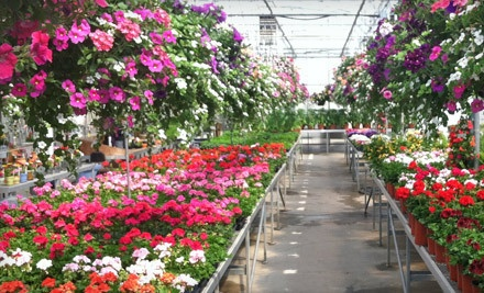 $30 Groupon to Spoth's Farm Market  - Spoth's Farm Market in East Amherst