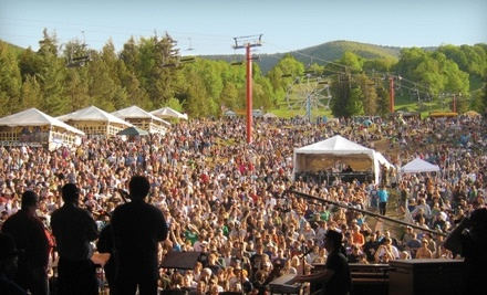 Mountain Jam Music Festival 2011: 1 Single-Day Pass for Fri., June 3 - Mountain Jam Music Festival 2011 in Hunter