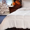 Up to 68% Off Comforter with Optional Pillows