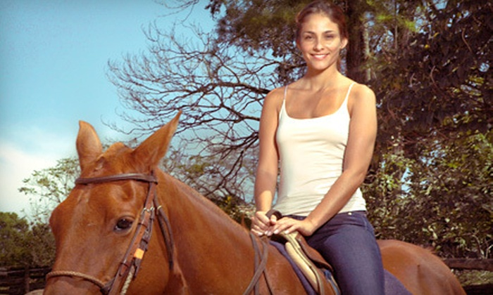 Equestrian's First Place - Royal Palm Beach-West Jupiter: Trail Ride for Two or Two Private Horseback-Riding Lessons for One at Equestrian's First Place (Up to 54% Off)